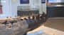 Botton Jaw of a Pliosaur