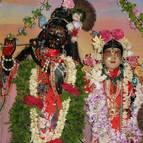 Radhastami and Vyasa Puja of Swami Narasingha - Photo 903