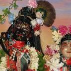 Radhastami and Vyasa Puja of Swami Narasingha - Photo 904