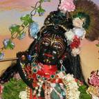 Radhastami and Vyasa Puja of Swami Narasingha - Photo 908