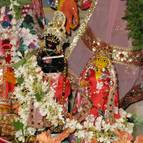 Radhastami and Vyasa Puja of Swami Narasingha - Photo 911