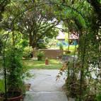 Garden - Photo 1207