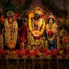 Sri Sri Gaura-Radha-Madhava Janmastami Dress