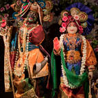 Radha-Madhava on Gopastami Day