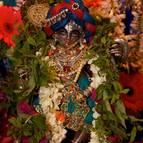 Kaliya-mardana Krsna