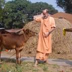 Visnu Maharaja Feeding Ekadasi