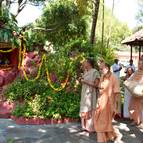 Kirtana Around Govardhana Hill