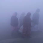 A Cold and Foggy Mela Morning
