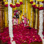 Sri Sri Radha-Govinda on Their Ratha