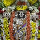 The Deity of Kari-Thimmappa Srinivasa