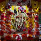 Mahaprabhu on His ratha
