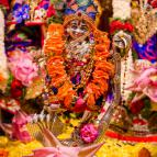 Sri Krsna Janmastami 2016 - Photo