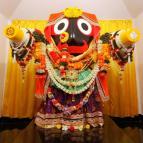 Jagannatha Rathayatra 2017 - Photo