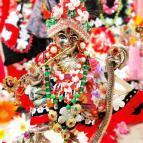 Gaura Purnima 2021 - Photo