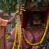 Guru Maharaja offering arati to Giriraja